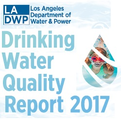 drinking water dwp square